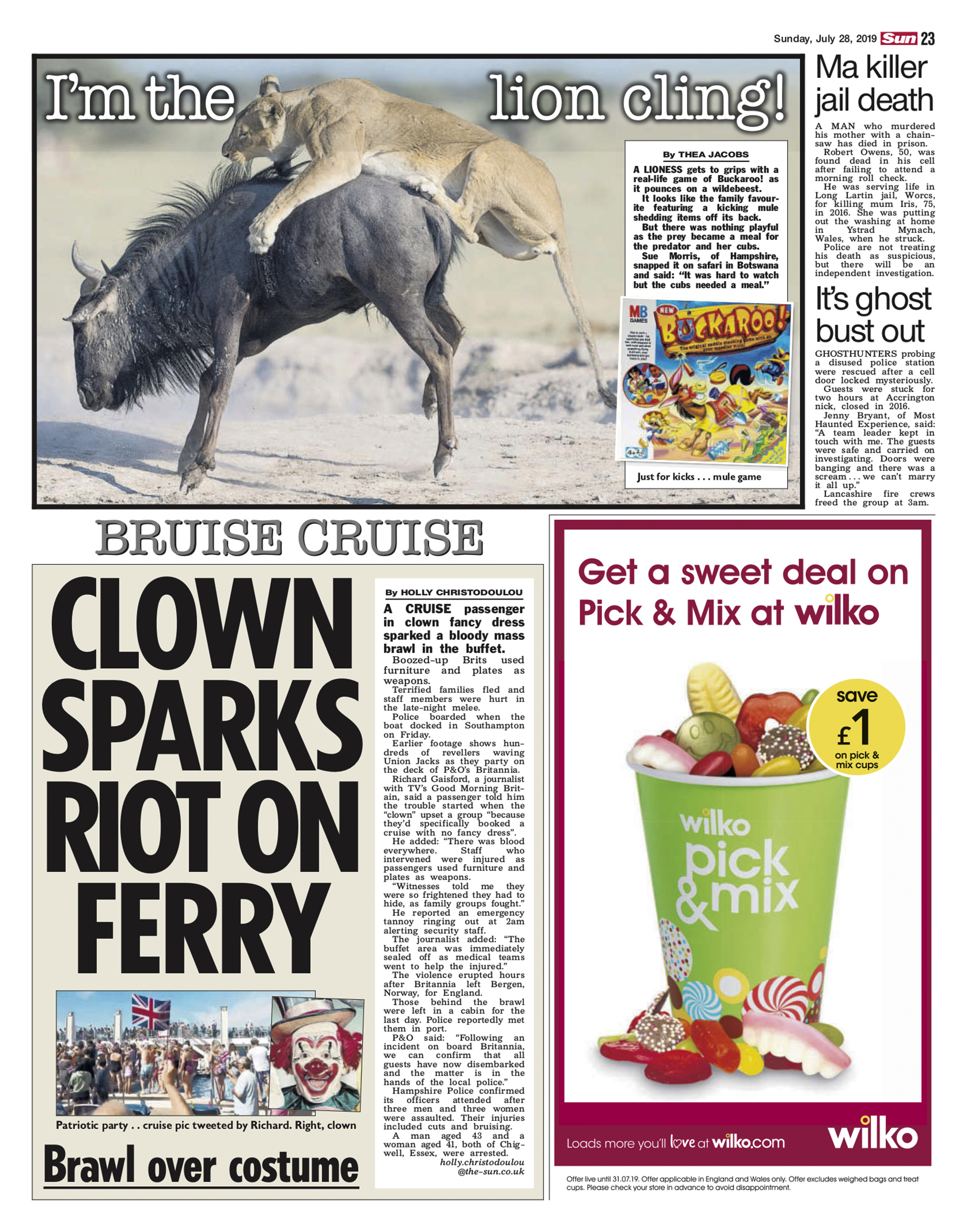 Lion image in The Sun newspaper